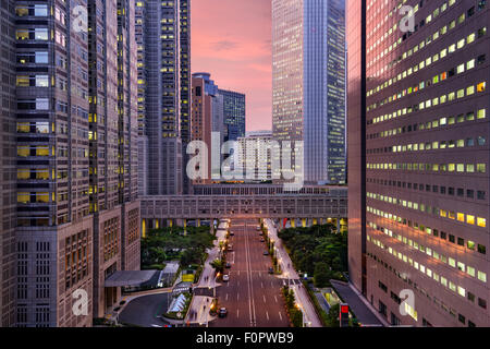 Tokyo, Japan Metropolitan Government Building cityscape in Shinjuku Ward. - Stock Photo