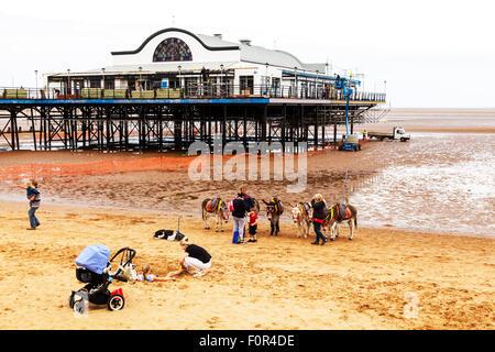 Cleethorpes pier Donkey ride rides on beach child sat on riding donkeys summer entertainment for kids UK England - Stock Photo
