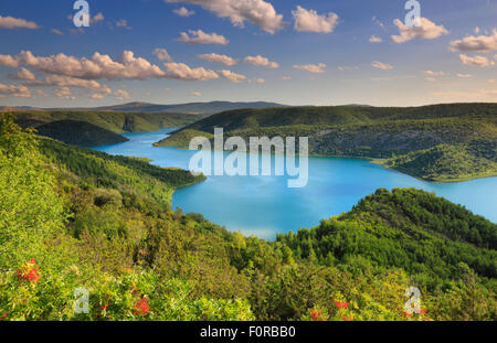 River landscape. Natioal park Krka in Croatia - Stock Photo
