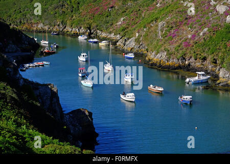 Moored boats in the harbour at Porth Clais near St Davids, Pembrokeshire, Wales - Stock Photo