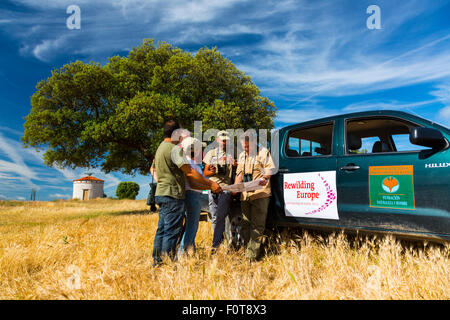 People working for Rewilding Europe project next to vehicle in Campanarios de Azaba Biological Reserve, a rewilding - Stock Photo