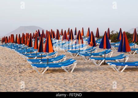 Line of loungers and umbrellas on a sandy beach - Stock Photo