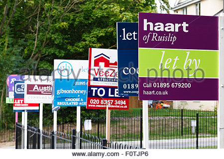 Different To Let property signs in a row in London, UK - Stock Photo