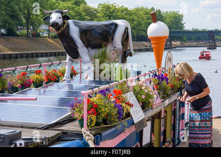 The Full Moo ice-cream boat on the River Ouse, City of York, England, UK - Stock Photo