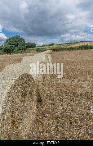 Hay / straw bales and stubble field after harvested cereal crop. Focus on bale and stubble in foreground bottom - Stock Photo