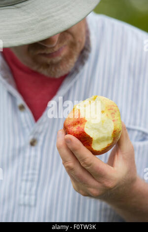 Gardener eating an apple selective focus - Stock Photo