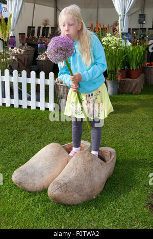 Southport, Merseyside, UK. 21st August, 2015. Daisy Banks aged 6, stands in giant clogs blowing petals off the stem - Stock Photo