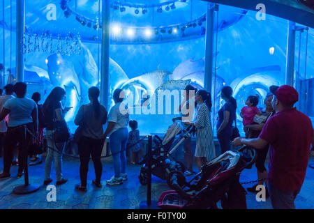 New York, NY, USA. 21st Aug, 2015. Crowds of excited adults and children take rides on opening day of the SeaGlass - Stock Photo