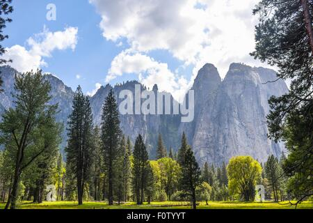 View of mountains and forest, Yosemite National Park, California, USA - Stock Photo