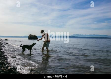 Man playing with his dog on shores of Puget Sound, Seattle, Washington State, USA - Stock Photo