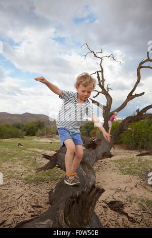 Boy climbing on dead tree, Purros, Kaokoland, Namibia - Stock Photo