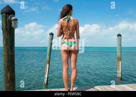 Rear view of young woman wearing bikini looking out to sea, Islamorada, Florida, USA - Stock Photo