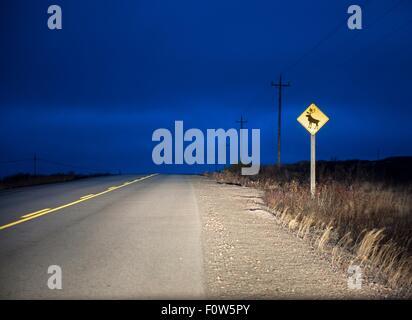 Reindeer warning sign on rural road at night, Fogo Island, Newfoundland, Canada - Stock Photo