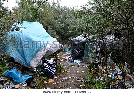 A makeshift camp in the woods near Calais, Migrants from Afghanistan live here in insalubrious conditions while - Stock Photo