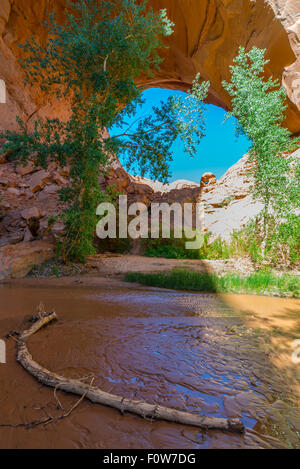Beautiful Jacob Hamblin Arch in Coyote Gulch Grand Staircase Escalante National Monument - Stock Photo