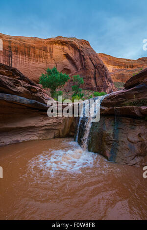 Stock Photo - Waterfall in Coyote Gulch part of Grand Staircase Escalante National Monument in southern Utah canyon - Stock Photo