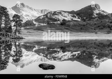 A near perfect reflection of the Langale Pikes and Side Pike in Blea Tarn, Little Langdale in the Lake District - Stock Photo
