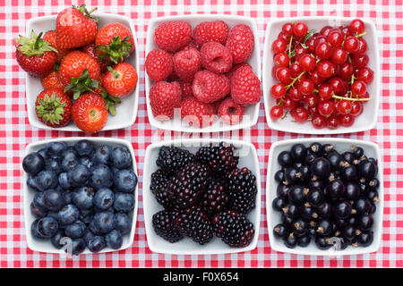 Redcurrants, Blackcurrants, Blackberries, Strawberries, Raspberries and Blueberries in white bowls on a checked - Stock Photo