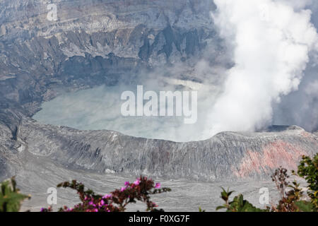 A close up of the lake and caldera with plums of hot steam rising from Poas Volcano in Costa Rica. - Stock Photo
