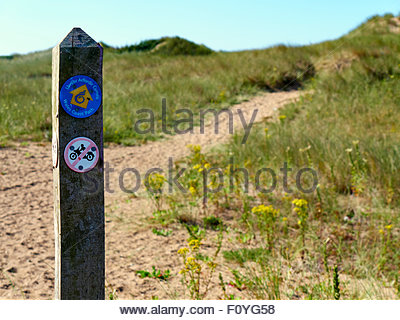 A wooden signpost showing the welsh wales coast path on the sandy dunes in baglan port talbot south wales - Stock Photo