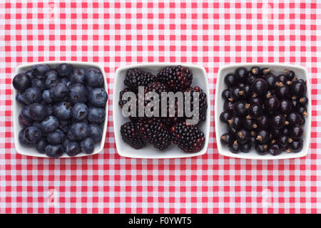 Blueberries, Blackberries, and Blackcurrants in white bowls on a checked background. - Stock Photo