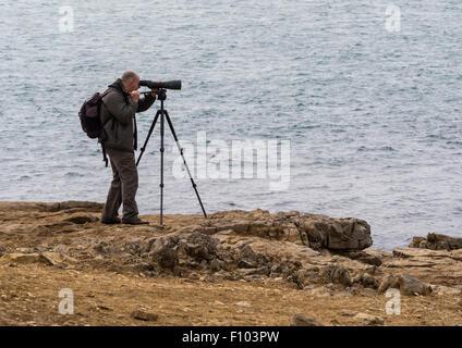 Birdwatcher using Telescope and Tripod on coastal cliff at Portland Bill, Dorset, England, UK - Stock Photo