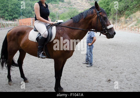Horsewoman sitting on a dark bay horse - Stock Photo