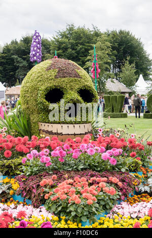 Show garden at the rhs flower show at tatton park for Garden design knutsford