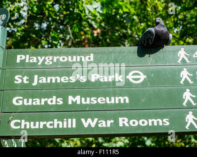 A pigeon covered sign in St James's Park - Stock Photo