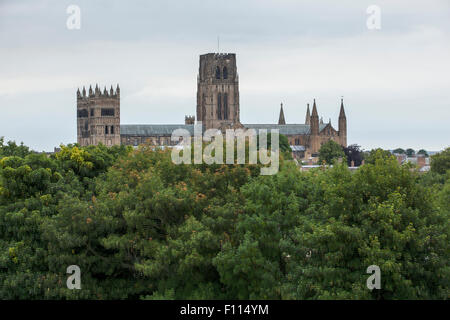 Durham Cathedral and trees. A view from St Aidan's University College outside the city of Durham. Taken with a long - Stock Photo