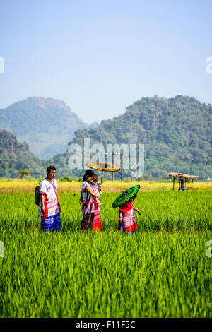 Asian family walking under parasols in rural field - Stock Photo