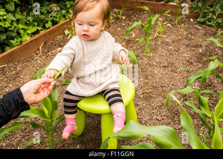 Caucasian mother giving vegetable to daughter in garden - Stock Photo