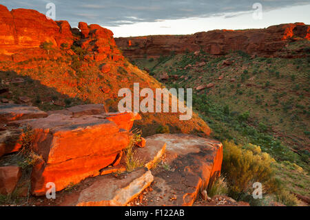 Kings Canyon (Watarrka) in evening light. - Stock Photo