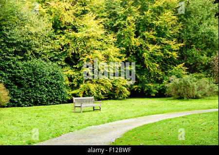 Beautiful autumn day in the park with small footpath and wooden bench - Stock Photo