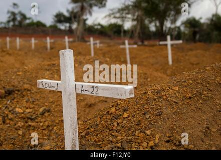 Simple crosses mark the gravesides for victims of the Ebola outbreak at Disco Hill Cemetery January 26, 2015 in - Stock Photo