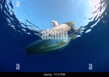 Red Sea, Egypt. 15th Oct, 2014. Bottom of the boat under water, Red sea, Egypt, Africa © Andrey Nekrasov/ZUMA Wire/ZUMAPRESS.com/Alamy - Stock Photo