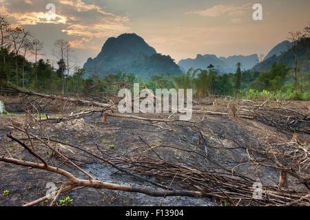 Slash and burn deforestation near Vang Vieng, Laos, March 2009. - Stock Photo