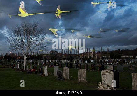 Rose-ringed / ring-necked parakeets (Psittacula krameri) in flight on way to roost in an urban cemetery, London, - Stock Photo