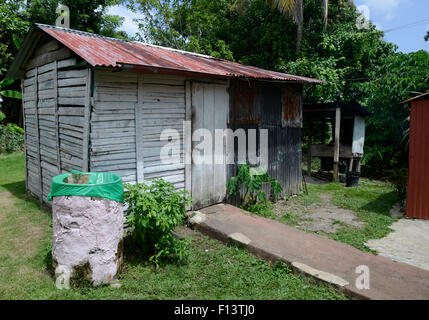 old metal and wooden shed found in the Dominican Republic in the jungle. there is a rain barrel used to collect - Stock Photo