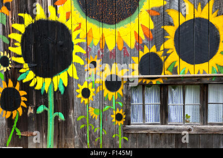 Sunflowers painted  on side of  barn along State Highway, Bat Cave, Henderson County. North Carolina, USA, October - Stock Photo