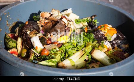 Trash can full of organic waste - Stock Photo