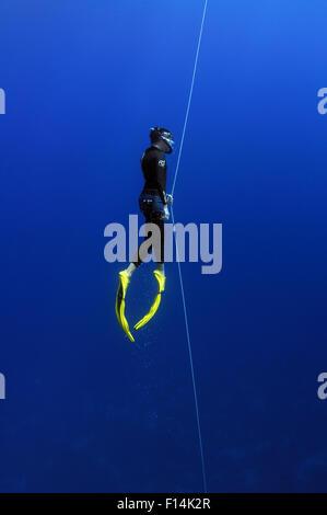 Red Sea, Egypt. 15th Oct, 2014. Freediving in Red Sea, Egypt © Andrey Nekrasov/ZUMA Wire/ZUMAPRESS.com/Alamy Live - Stock Photo