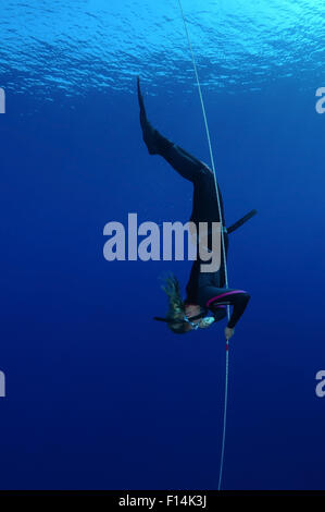 Red Sea, Egypt. 15th Oct, 2014. Freediving in Red Sea, Egypt © Andrey Nekrasov/ZUMA Wire/ZUMAPRESS.com/Alamy Live - Stock Photo