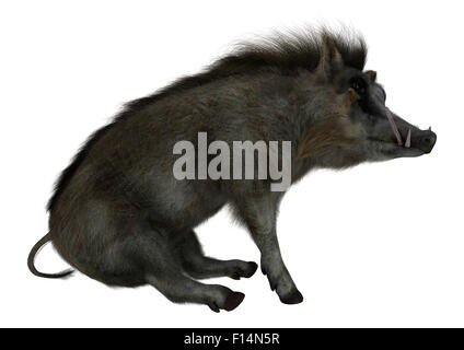3D digital render of a wild warthog sitting isolated on white background - Stock Photo