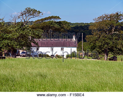 The farmhouse and tea rooms in ogmore by sea on the heritage coast in south wales uk gb - Stock Photo