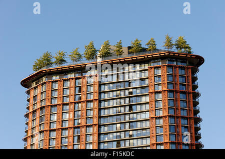 Trees growing on top of the Woodward's Building in downtown Vancouver, British Columbia, Canada - Stock Photo