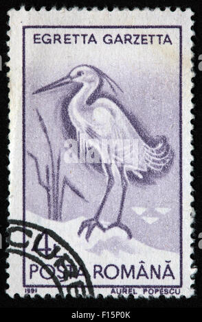1991 Posta Romana Egretta Garzetta Egret Aurel Popescu Stamp - Stock Photo