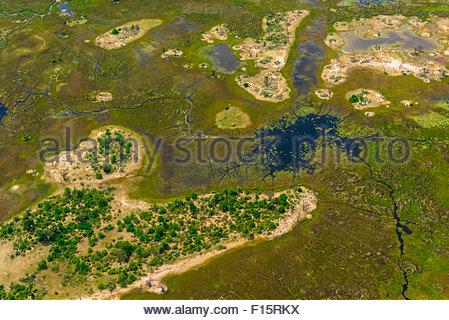 Aerial view, Okavango Delta, Botswana. - Stock Photo