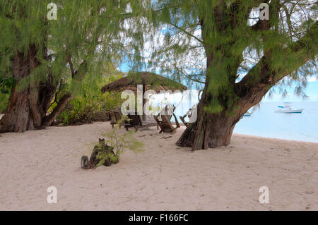 Oct. 15, 2014 - Seychelles - Wooden chairs are under the trees on the sandy shores of the Indian Ocean, Denis island, - Stock Photo