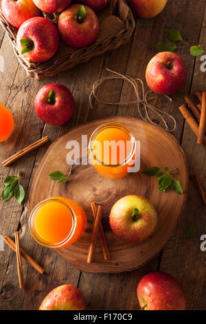 Organic Orange Apple Cider with Cinnamon and Spices - Stock Photo